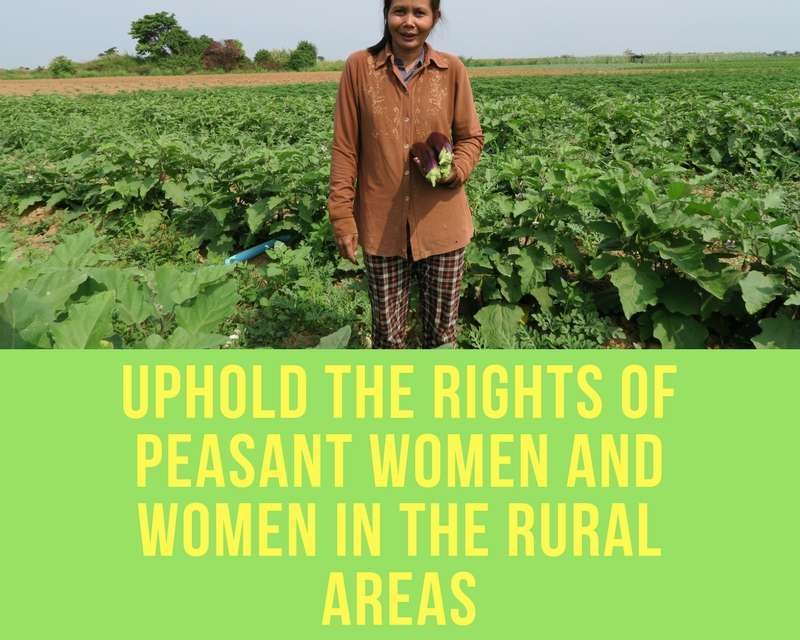 Rights of peasant women and other women working in rural areas