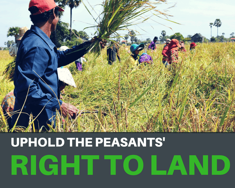 Towards Human Rights Governance of Land and Natural Resources
