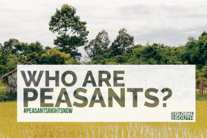 who_are_peasants_-_coverpicture.png