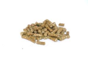 Hø/gulerod pellets - Foderhulen.dk