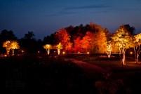 Beleuchtung der Natur