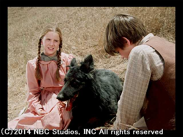 大草原の小さな家 第4シーズン、5話