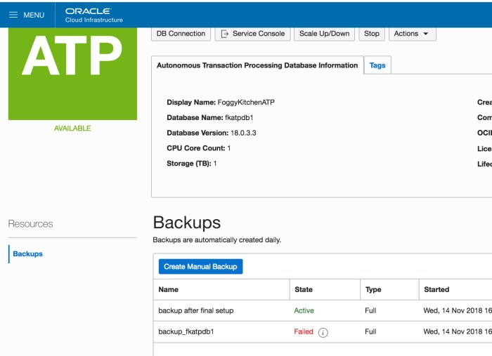 ATP_with_successful_backup