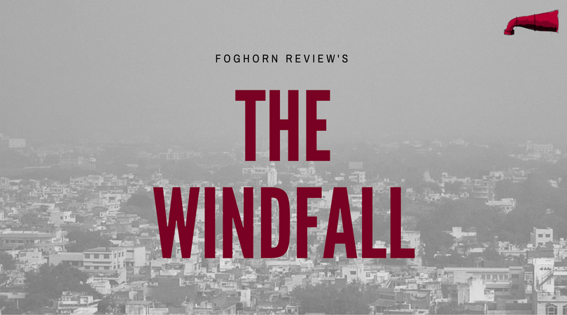The Windfall Book Review