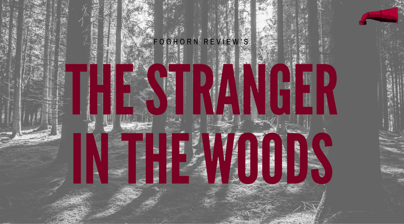 The Stranger in the Woods Book Review