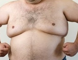 chest fat