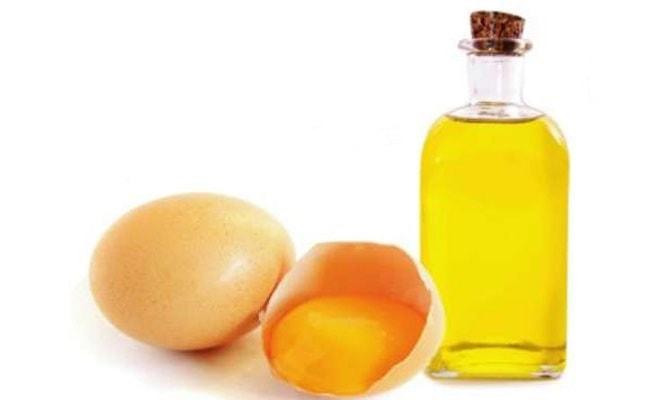 egg oil