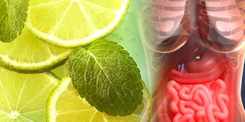 Detoxification Natural Methods