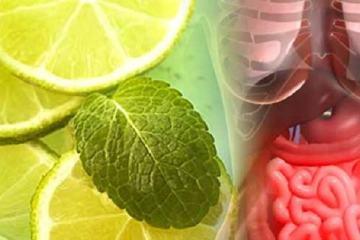 Detoxification Natural Methods