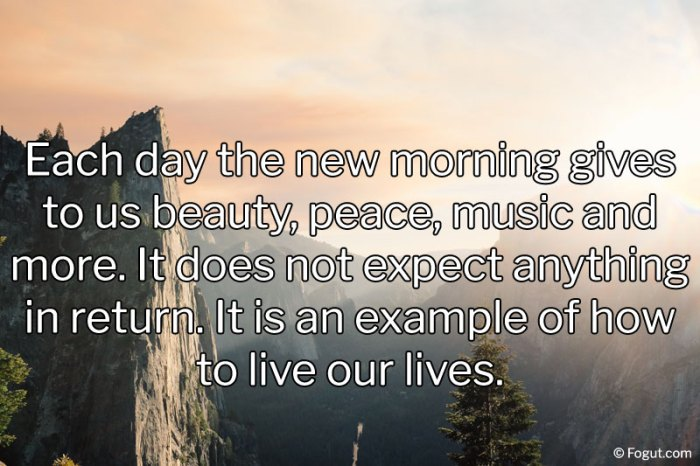 Each day the new morning gives to us beauty, peace, music and more.