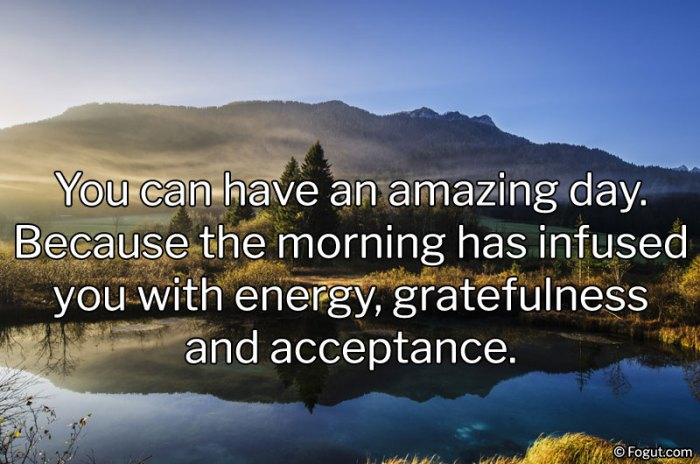 You can have an amazing day.