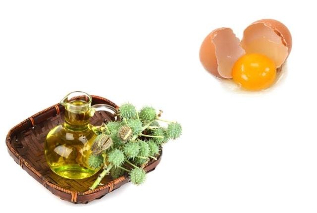 castor oil & egg