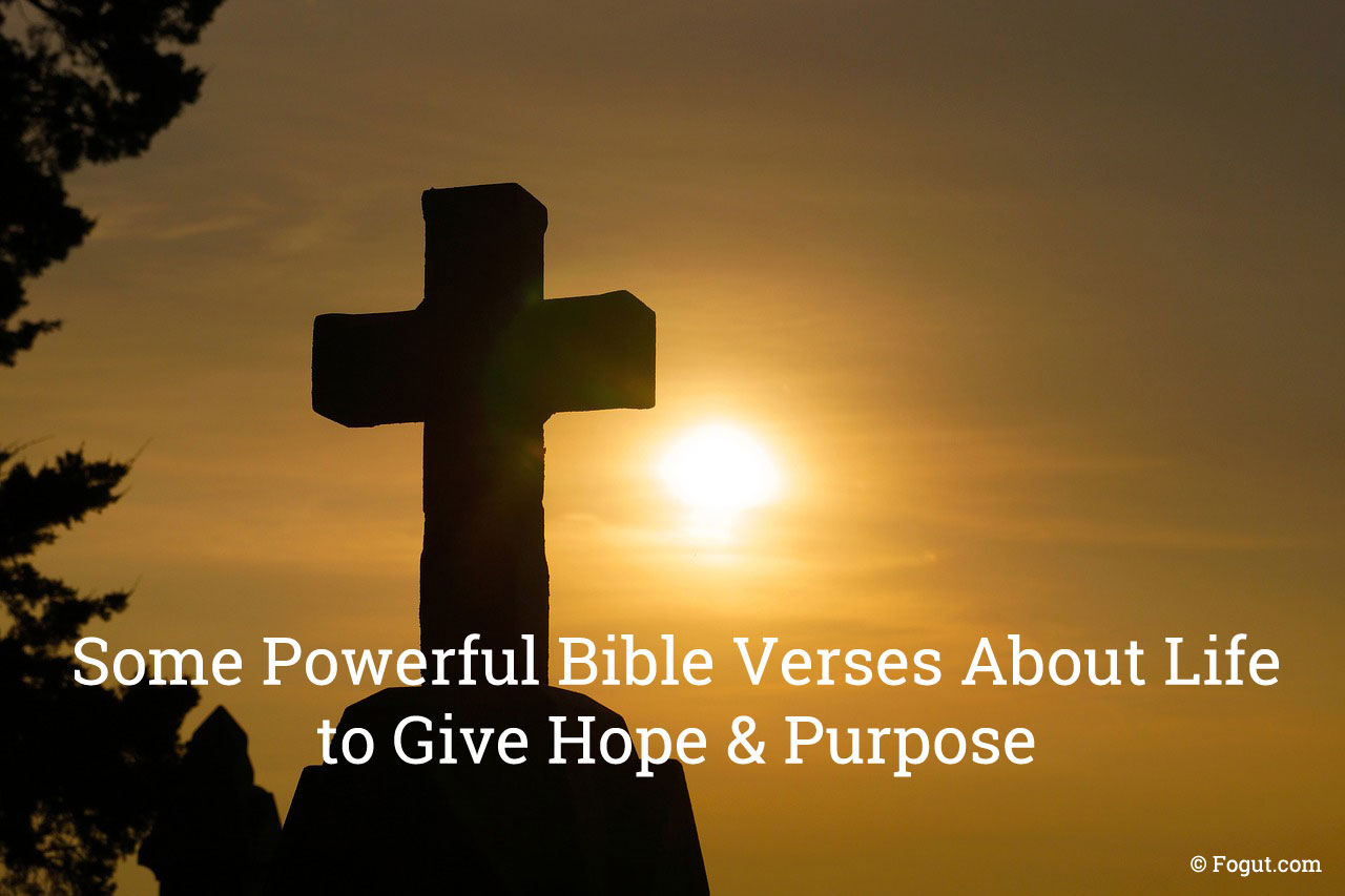 Bible Verses About Life to Give Hope & Purpose
