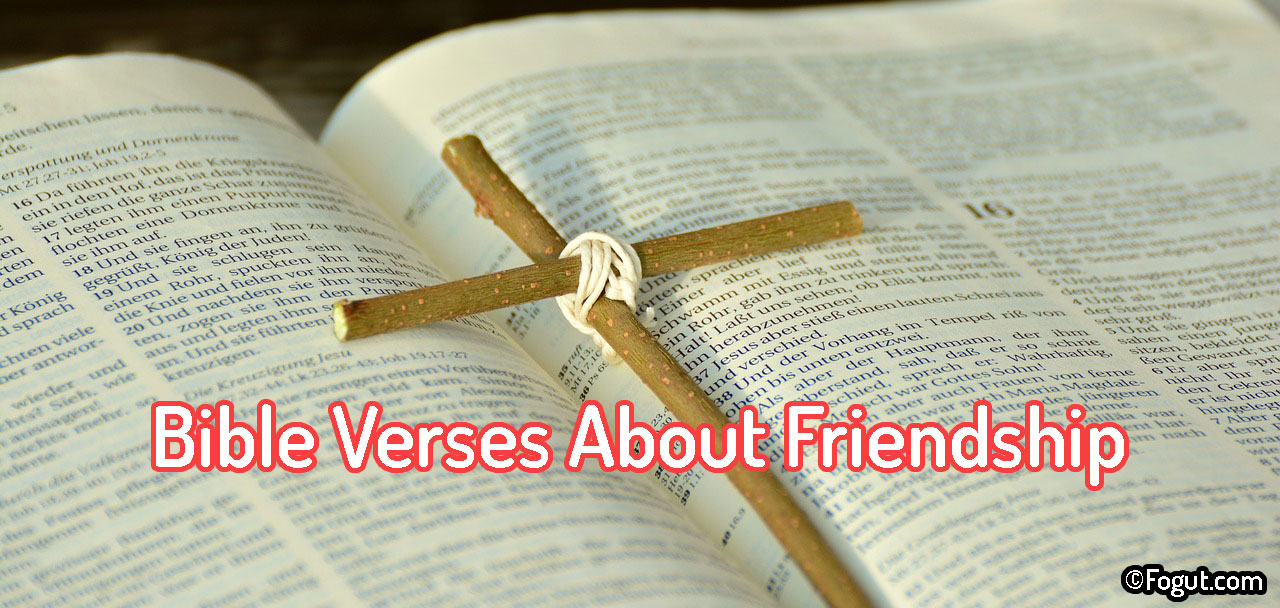 Bible Verses About Friendship