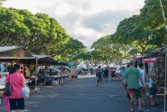 180805_2980 Aloha Stadium Swap Meet