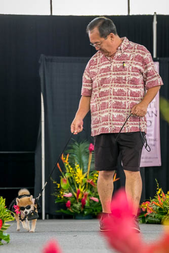 fokopoint-4403 Celebrities and Their Pets Fashion Show