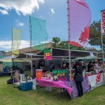 fokopoint-8773 New Years Ohana Festival at Moiliili Field