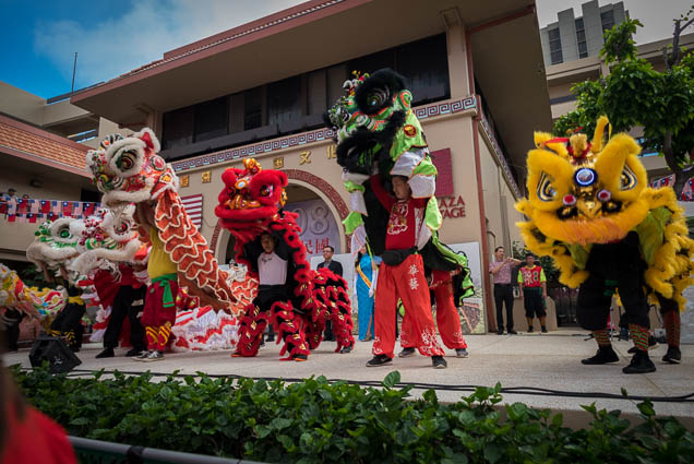 fokopoint-0019 Chinese New Years Celebration 2019