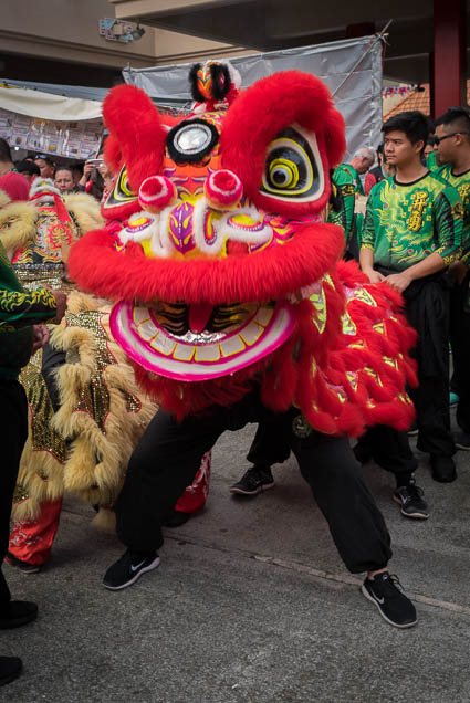 fokopoint-0043 Chinese New Years Celebration 2019