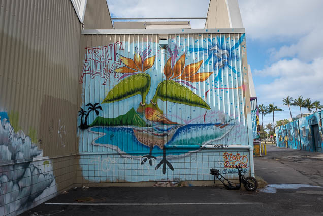 kakaako-street-art-honolulu-fokopoint-1061 Kaka'ako Street Art March 2019