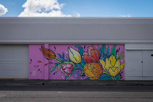 kakaako-street-art-honolulu-fokopoint-1114 Kaka'ako Street Art March 2019