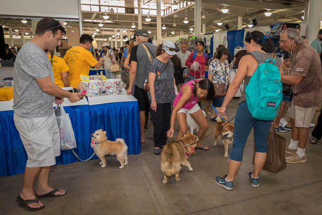 hawaii-pet-expo-2019-honolulu-blaisdell-fokopoint-3004 Hawaii Pet Expo 2019