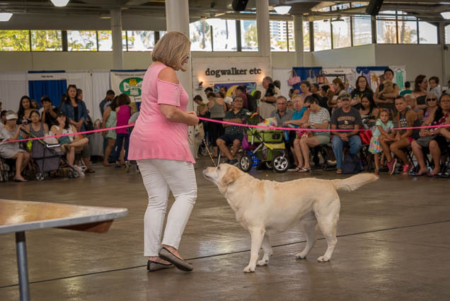 hawaii-pet-expo-2019-honolulu-blaisdell-fokopoint-3071 Hawaii Pet Expo 2019