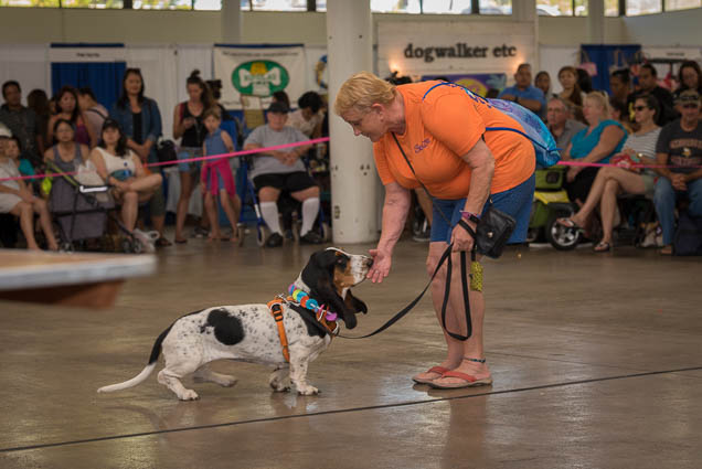 hawaii-pet-expo-2019-honolulu-blaisdell-fokopoint-3097 Hawaii Pet Expo 2019