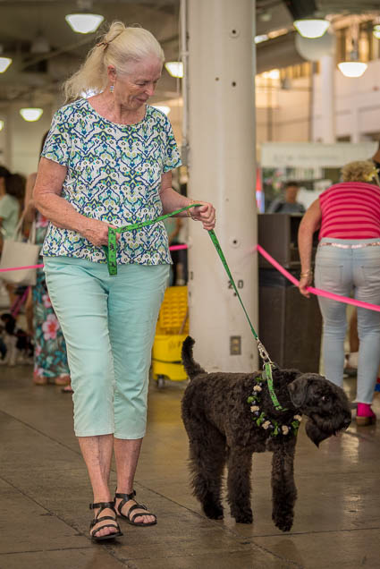 hawaii-pet-expo-2019-honolulu-blaisdell-fokopoint-3209 Hawaii Pet Expo 2019