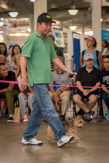 hawaii-pet-expo-2019-honolulu-blaisdell-fokopoint-3220 Hawaii Pet Expo 2019