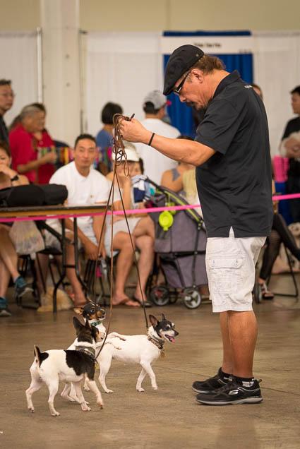 hawaii-pet-expo-2019-honolulu-blaisdell-fokopoint-3319 Hawaii Pet Expo 2019