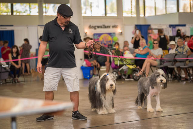 hawaii-pet-expo-2019-honolulu-blaisdell-fokopoint-3400 Hawaii Pet Expo 2019