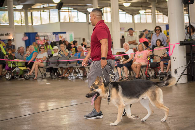 hawaii-pet-expo-2019-honolulu-blaisdell-fokopoint-3438 Hawaii Pet Expo 2019