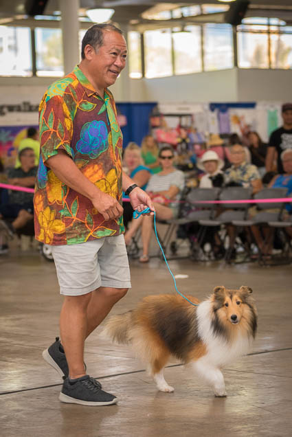 hawaii-pet-expo-2019-honolulu-blaisdell-fokopoint-3454 Hawaii Pet Expo 2019