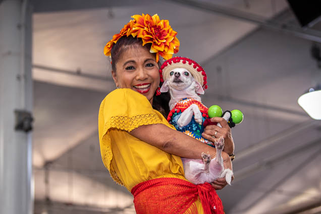 celebrities-pets-fashion-show-2019-honolulu-fokopoint-8657 Celebrities and their Pets Fashion Show 2019