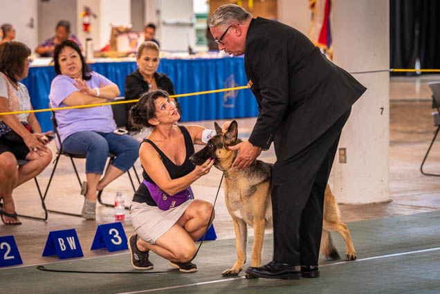 hawaiian-kennel-club-dog-show-2019-blaisdell-honolulu-fokopoint-7055 Hawaiian Kennel Club Dog Show 2019