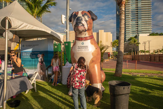 inflatable-dog-petblock-paina-honolulu-2019-fokopoint-1407 PetBlock Paina at Victoria Ward Park