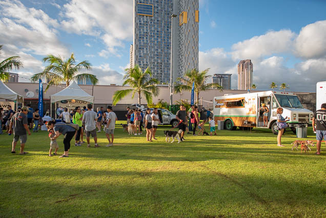 petblock-paina-honolulu-2019-fokopoint-1400 PetBlock Paina at Victoria Ward Park