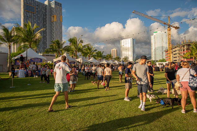 petblock-paina-honolulu-2019-fokopoint-1409 PetBlock Paina at Victoria Ward Park