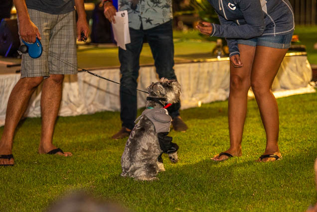 petblock-paina-honolulu-2019-fokopoint-1766 PetBlock Paina at Victoria Ward Park