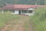 Diduga SD dan SMP di Desa Ukalahin Tak Ada Kegiatan Belajar Mengajar