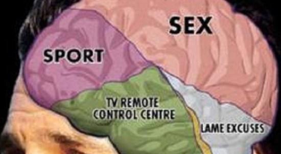 Pornografi Dapat Merusak Lima Bagian Otak. Opini Arifnal Hakim Amdimas