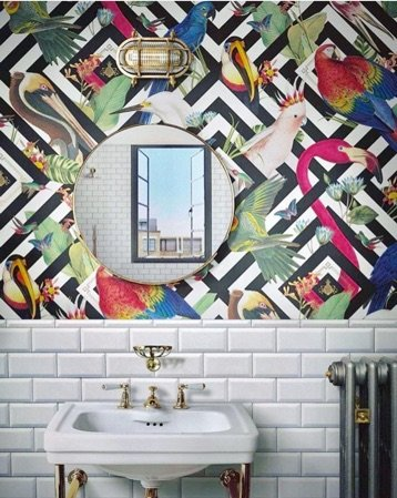 bathrom wallpaper ideas birds