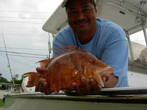 Jon Turla hogfish