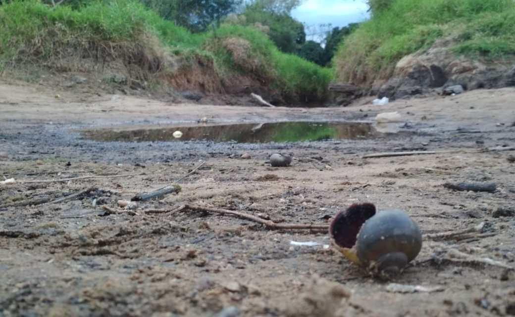 Chapada: Urgente, agricultores familiares reúnem com representante da Sema para discutir a situação do Rio Utinga