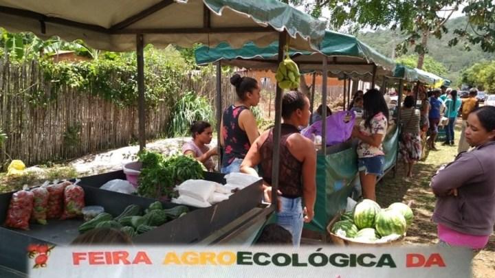 Chapada: Comunidade rural do município de Lençóis realiza sua IX Feira Agroecológica