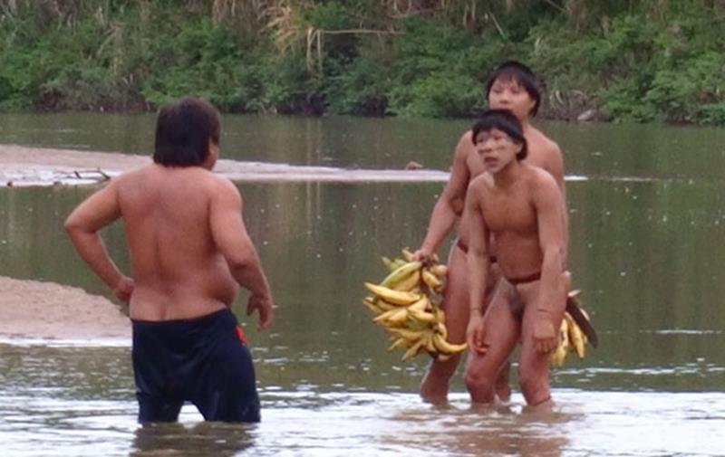 Índios isolados em contato com indígenas de aldeias acreanas/Foto: Funai