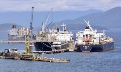 Portos movimentam 57 milhões de toneladas e consolidam recorde