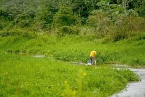 Read more about the article Liminar que permitia atividade de pesca no Pantanal é derrubada na Justiça