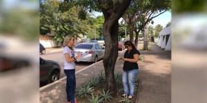 Read more about the article Censo arbóreo já mapeou quase mil árvores em Corumbá